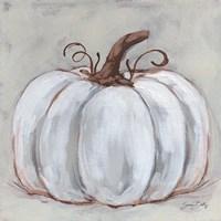 Pumpkin Close-Up II Framed Print