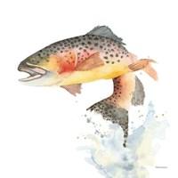 Cutthroat Trout Fine Art Print