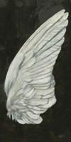 Wings III Framed Print