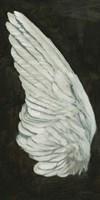 Wings II Fine Art Print