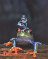 Frogs photo Fine Art Print