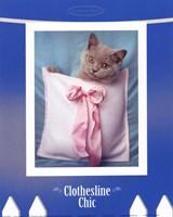Clothesline Chic Fine Art Print
