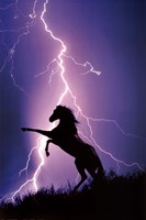 """Lightning And Silhouette Of Horse by Richard Henson - 24"""" x 36"""""""