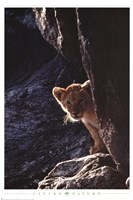 "Baby Lion by Richard Henson - 24"" x 36"", FulcrumGallery.com brand"