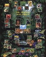 "Tropical Rain Forest movie poster by Richard Henson - 16"" x 20"""
