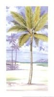 "Palm Island II by Paul Brent - 9"" x 16"""