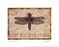 "Dragonfly IV by Pamela Gladding - 10"" x 8"""