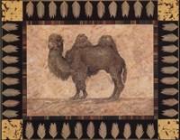 "Camel by Pamela Gladding - 10"" x 8"""
