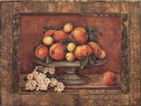 Florentine Peach Fine Art Print