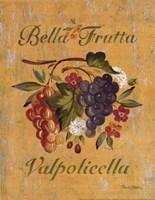 "Valpolicella by Pamela Gladding - 11"" x 14"""