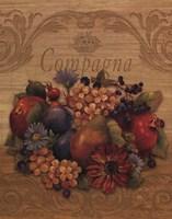 "Compagna by Pamela Gladding - 16"" x 20"""
