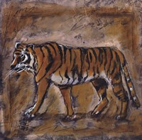 Safari Tiger Fine Art Print