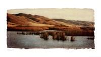 "Estuary II by Amy Melious - 39"" x 22"""
