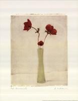 Red Anemones III Framed Print
