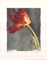"11"" x 14"" Flower Art"