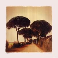 "Viaggio I by Amy Melious - 20"" x 20"""
