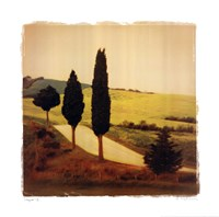 """Viaggio II by Amy Melious - 20"""" x 20"""""""