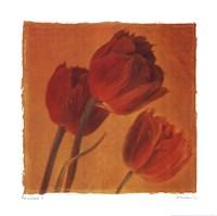 Red  Gold I Framed Print