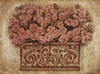 """24"""" x 18"""" Pink Rose Pictures"""
