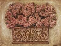 """Pink Roses by Eva Misa - 24"""" x 18"""""""