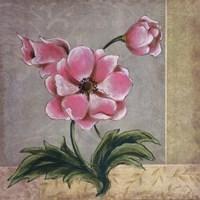 "Spring Floral I by Susan Osborne - 16"" x 16"""