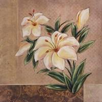 """Spring Floral II by Susan Osborne - 16"""" x 16"""""""