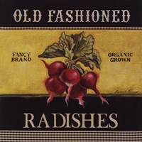 Old Fashioned Radishes Fine Art Print