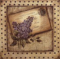 Paris Lilac Fine Art Print