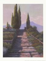Santa Lucia Fine Art Print