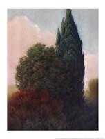 Tuscan Trees II Fine Art Print