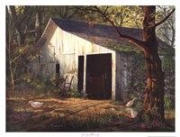 """Spring Morning by Michael Humphries - 17"""" x 13"""""""