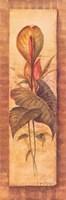 Tropical Perennial IV Fine Art Print