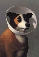 Filmhound Fine Art Print