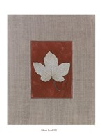 "Silver Leaf III by Franco D'ottore - 14"" x 20"""