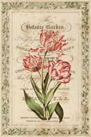 Botanic Garden Fine Art Print