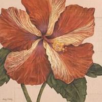 Island Hibiscus I Framed Print