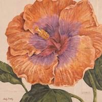 Island Hibiscus II Fine Art Print