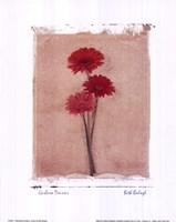 Gerbera Daisies Fine Art Print