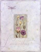 Lisianthus Fine Art Print