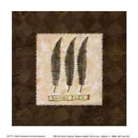 Sword Fern Fine Art Print