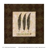 "Sword Fern by Walter Robertson - 6"" x 6"""