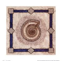 Solarium Shell Fine Art Print