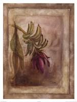 Plantano en Flor I Fine Art Print