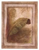 Palm Leaf Impression I Fine Art Print