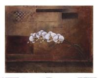 Touch of Beauty II Fine Art Print