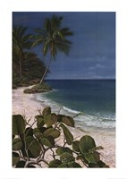 Carribean Escape I Fine Art Print