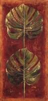 Caliente III Framed Print