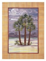 "Mediterranean Fan Palm by Paul Brent - 24"" x 32"""