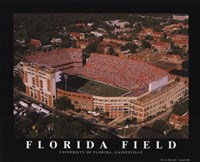 Florida Field-U of Florida Fine Art Print