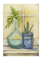 Sunkissed Herbs I Fine Art Print